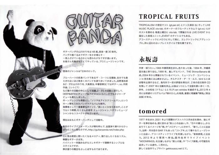 gitarpanda