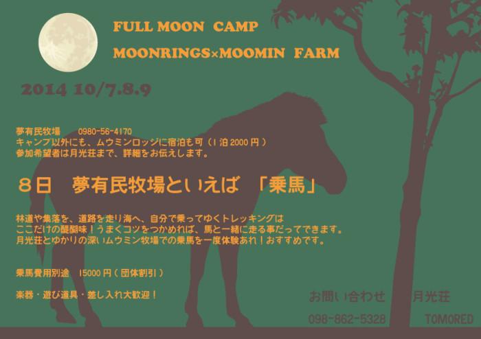 ムウミンキャンプポスター